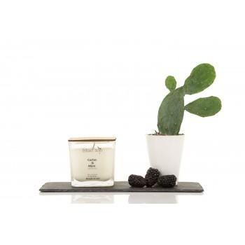 Bougie Au Soja 420ml - Cactus & Mure - Blanc Soja