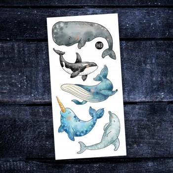 Tatouage Temporaire - Les Belles Baleines - Pico