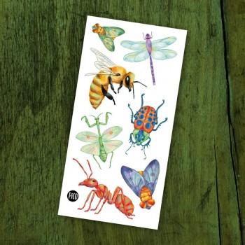Tatouage Temporaire - Les Insectes - Pico